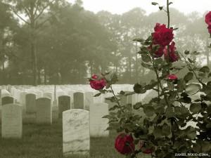 memorial-day-23